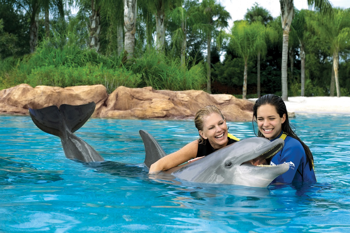 Discovery_Cove_orlando_attractions_american_vacation_living - disney
