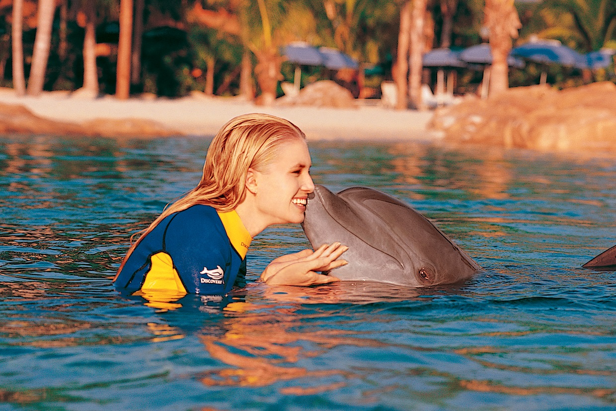 Swim_with_Dolphins_orlando_attractions_american_vacation_living - disney